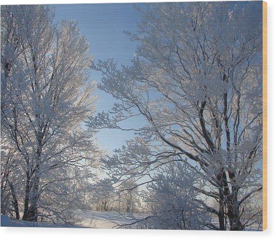 Winter Ice Wood Print