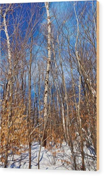 Winter Landscape I Wood Print