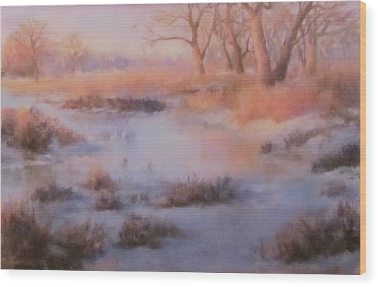 Winter Marsh Series- Fire And Ice Wood Print