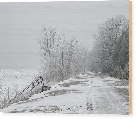 Winter On The Old Lakeshore Wood Print