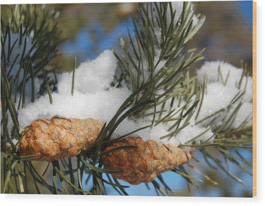 Winter Pine Cones Wood Print