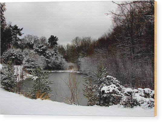 Winter Pond Wood Print