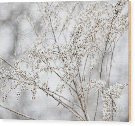 Winter Sight Wood Print