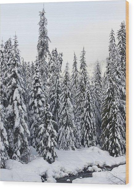 Winter Snow Scene Wood Print