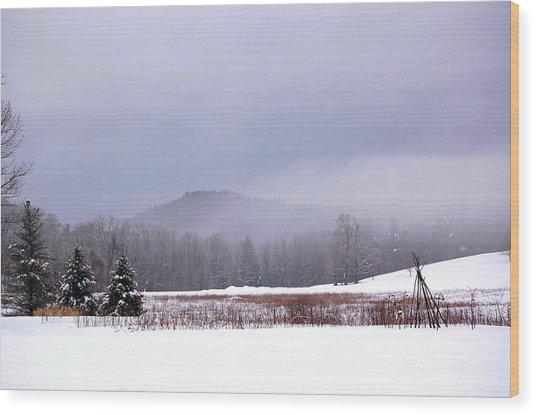 Winter Strata Wood Print