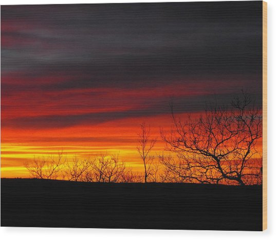 Winter Sunset Wood Print by Rebecca Cearley