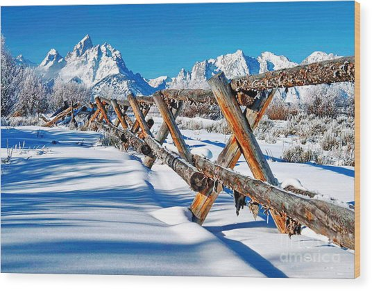 Winter Tetons Fence Wood Print by Richard Brady