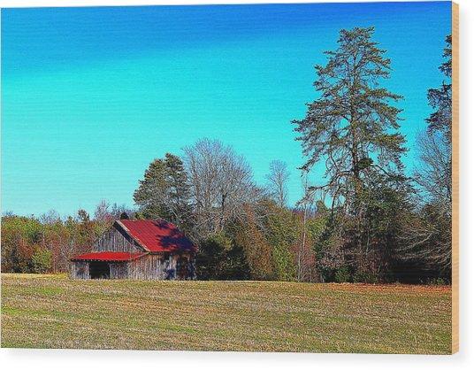 Winter Tobacco Field Wood Print