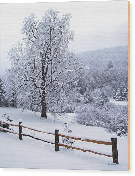 Winter Tree And Fence In The Valley Wood Print