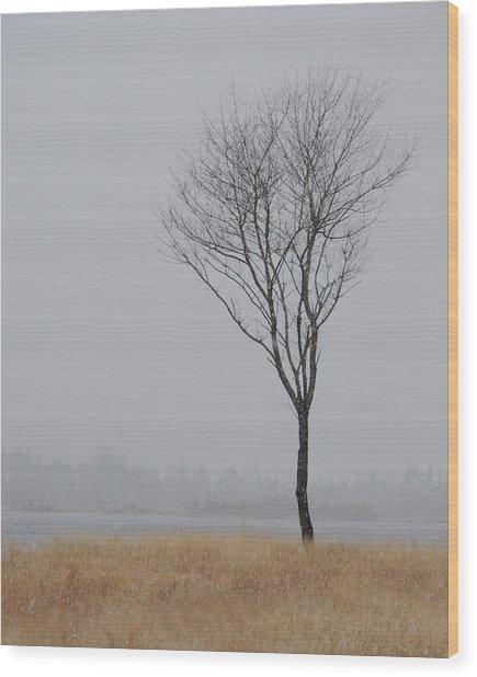 Winter Tree Wood Print