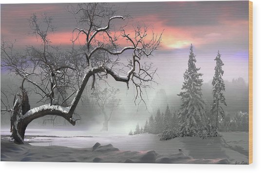 Winter Trees Wood Print by Igor Zenin