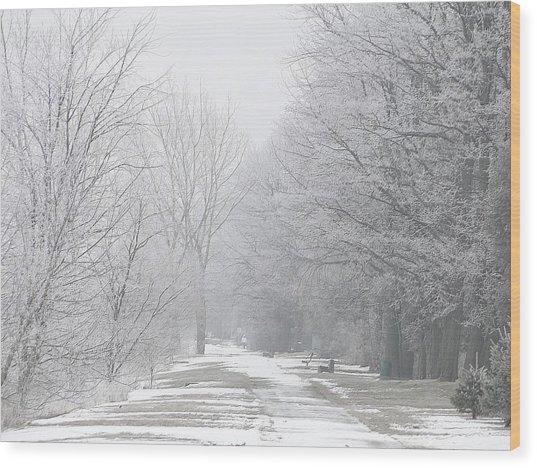 Winter Walkway Wood Print
