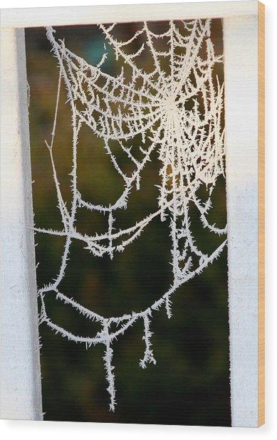 Winter Web Wood Print