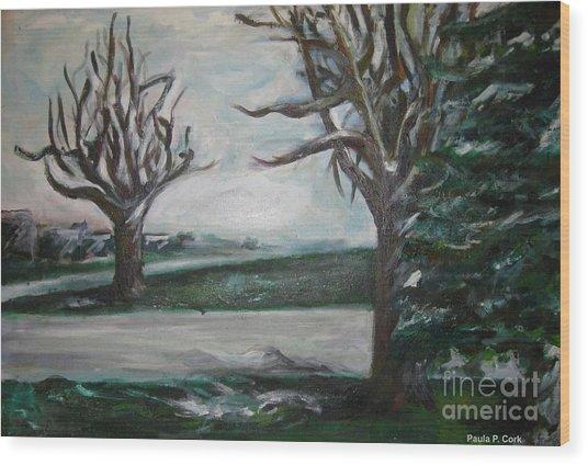 Winterland Slumber Wood Print by Paula Cork