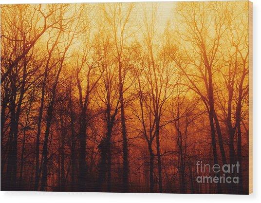 Winters Harvest Wood Print