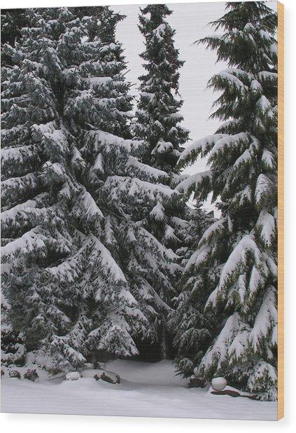 Winters Silence Wood Print