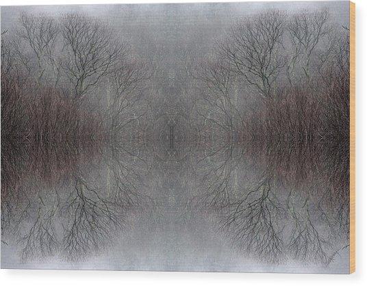 Wintertime Dreamtime Wood Print by Ed Kelley