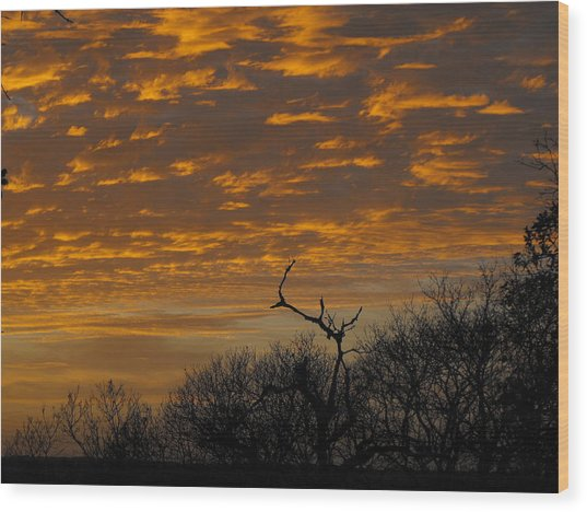 Wispy Sunset Clouds Wood Print by Rebecca Cearley