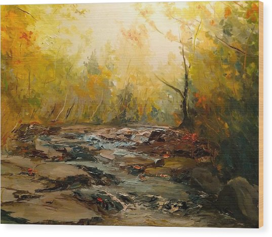 Wistful Waters Wood Print by Sarah Jane Conklin