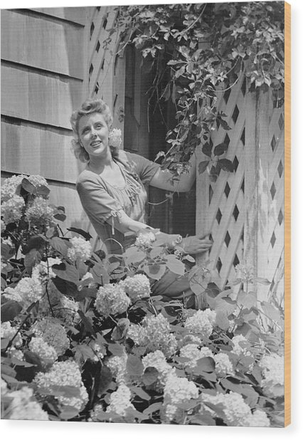 Woman Outside Of Home, Near Hydrangea Bush Wood Print by George Marks