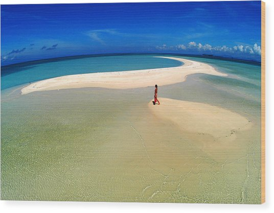 Woman Walking Along Sand Bar At A Tropical Beach In Malaysian Borneo's Sipadan-kapali-mabul Region Wood Print by Tim Rock