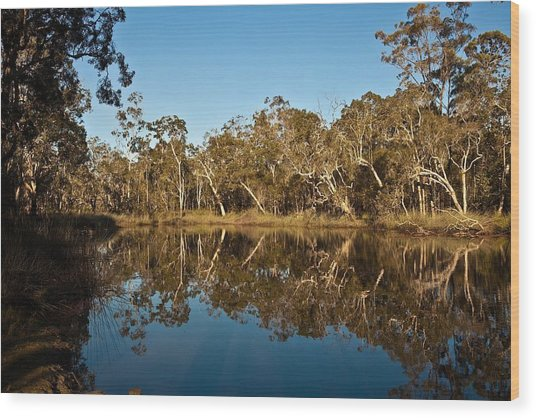 Wongi Water Holes Wood Print by David Barringhaus