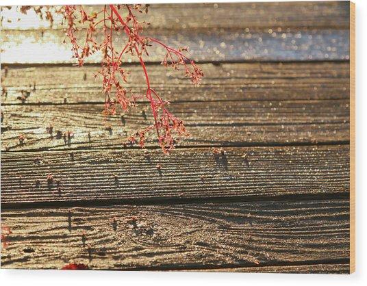 Wood Deck Red Sprig Wood Print