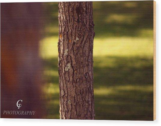 Wood Looking At Me Wood Print by Carolina Artemis Tamvaki
