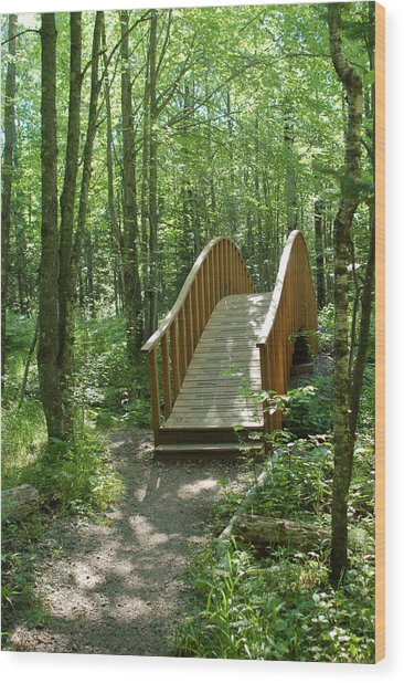 Woodland Bridge Wood Print