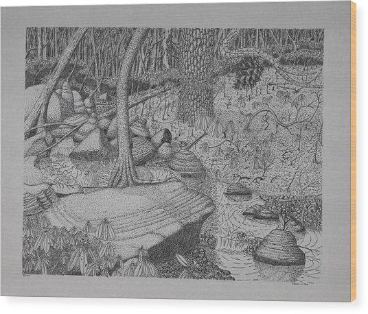 Woodland Stream Wood Print