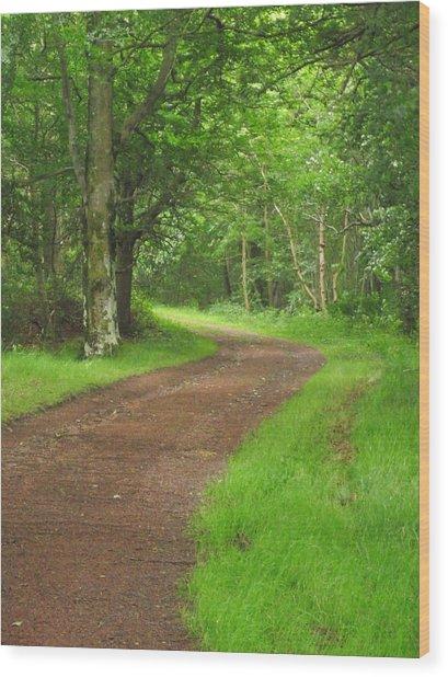 Woodland Track Wood Print