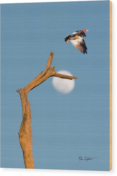Woody Flying By The Moon Wood Print