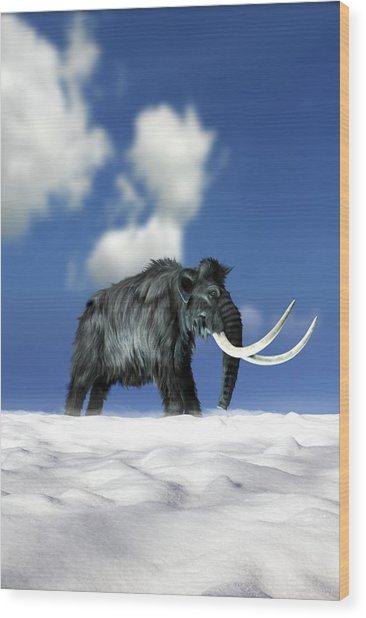 Woolly Mammoth, Artwork Wood Print by Victor Habbick Visions