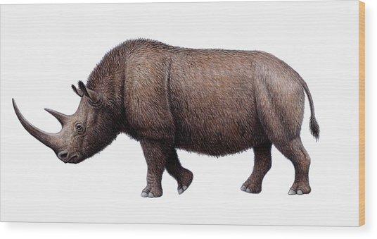 Woolly Rhinoceros, Artwork Wood Print by Mauricio Anton