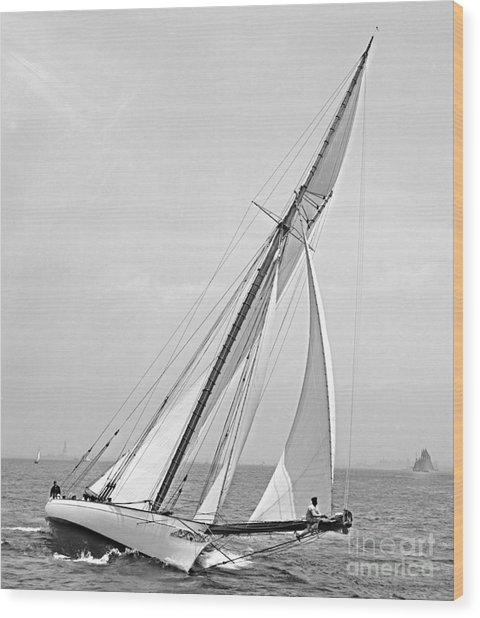Yacht Shamrock In New York Harbor 1895 Bw Wood Print