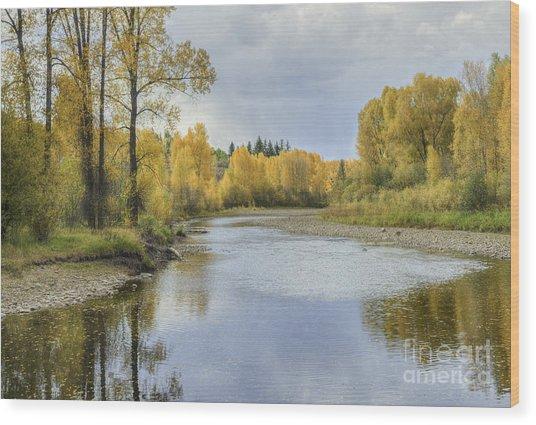 Yampa River Colorado II Wood Print