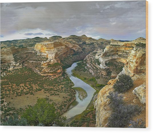 Yampa River Flowing Through Canyons Wood Print