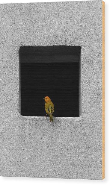 Yellow Birdie On The Window Sill Wood Print