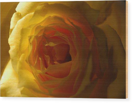 Yellow Delight Wood Print