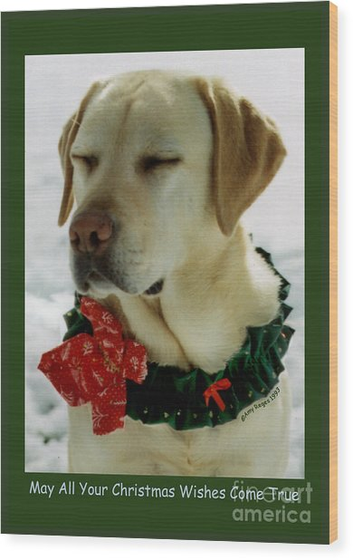 Yellow Lab Christmas Dreams Wood Print