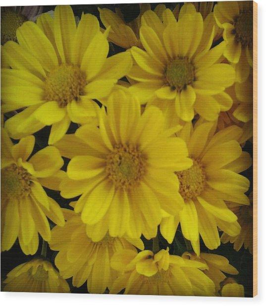 Yellow Love Wood Print by Chasity Johnson