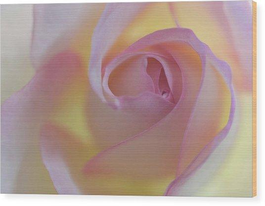 Yellow- Pink Wood Print