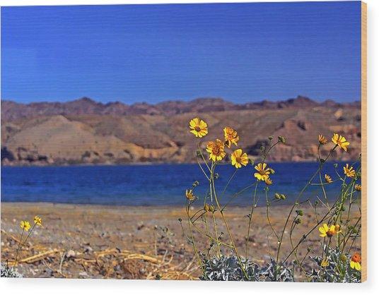 Yellow Sweet... Wood Print by Bonnie Stillman