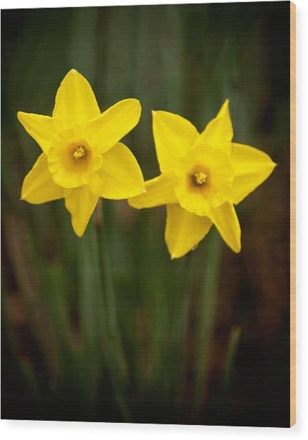 Yellow Twins Wood Print