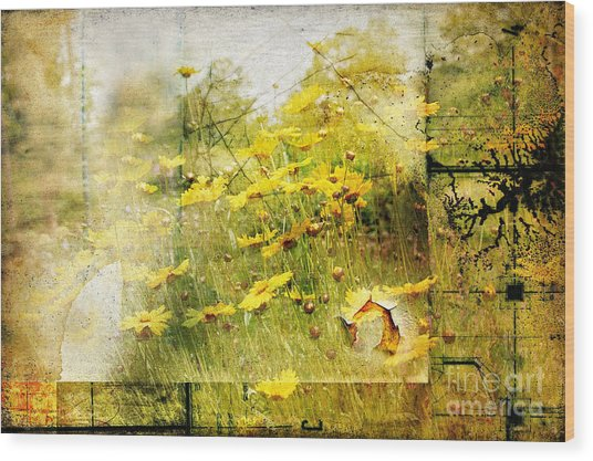 Yellow Wildflower Field Abstract Wood Print