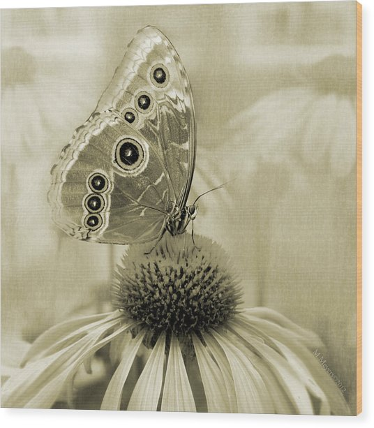 Yesterday's Visitor Wood Print by Melisa Meyers