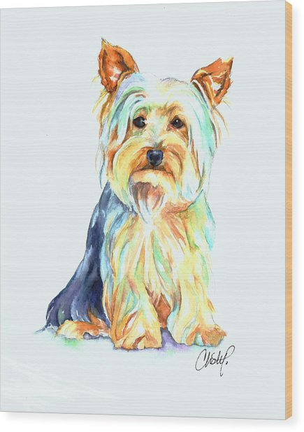 Yorkie Dog Portrait Wood Print