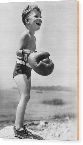 Young Boxer Wood Print by Doris Day