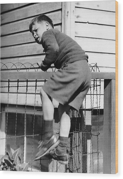 Young Boy Climbing Fence Wood Print by George Marks