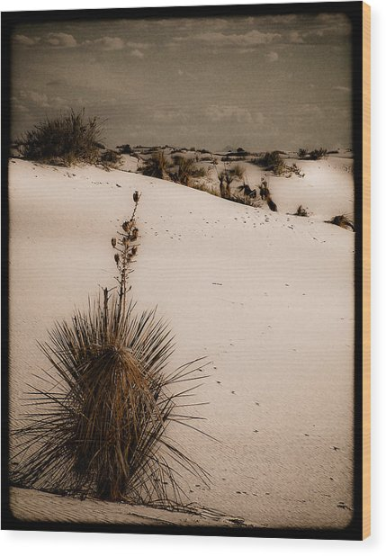 White Sands, New Mexico - Yucca Wood Print